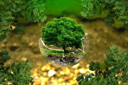 Le Pouvoir, et la réalité écologique